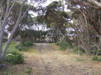 Picture of Lot 203  Hog Bay Road, Baudin Beach
