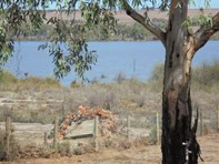 Picture of 36 Rob Loxton Road, Walker Flat