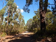 Picture of Lot 22 Bussell Highway, Forest Grove