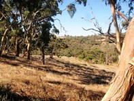 Picture of Lot 601 Leighton Road, Spring Gully