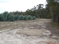 Picture of Lot 7 Four Forty Roa Four Forty Road, Benjinup