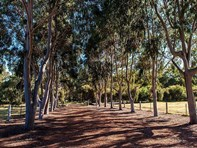 Picture of 37 Falls Heights, Gidgegannup
