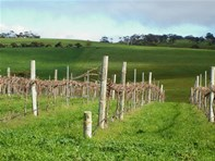 Picture of Lot 30 Braeside Road, Finniss