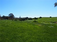 Picture of Lot 2 Short Street, Mintaro
