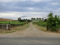 Picture of 195 Stonewell Road, Nuriootpa