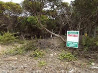 Picture of 49 Dolphin Crescent, Vivonne Bay