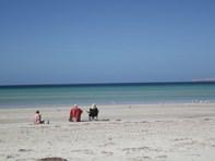 Picture of 75 Flinders Grove, Island Beach