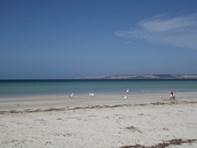 Picture of 172 Borda Road, Island Beach