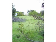 Picture of 43 Bay View Road, Nepean Bay