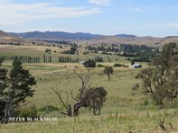 Picture of Lot 7/3499 Monaro Highway - Silver Brumby Estate, Bredbo