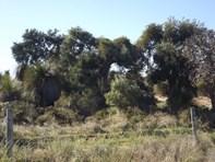 Picture of Lot 172 Heffron Way, Gabbadah