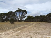 Picture of Lot 51 Birchmore Road, Macgillivray