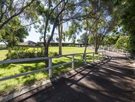 Picture of 49 DOUGLAS ROAD, Henley Brook