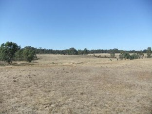 1200 per acre