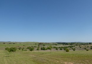 Picture of 101 Marble Hill Road, Goulburn
