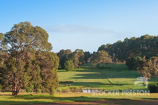 Picture of Lot 504 Caves Road, Margaret River