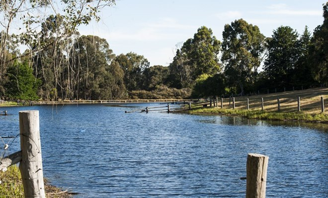 Picture of Lot 4034a Vasse Hwy, Nannup