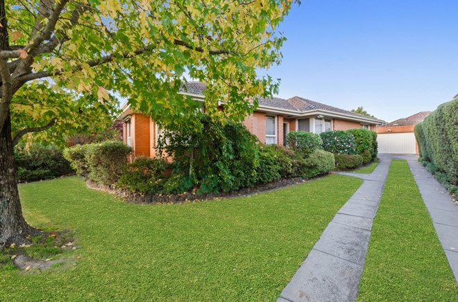 Picture of 42 Hillview Avenue, Mount Waverley