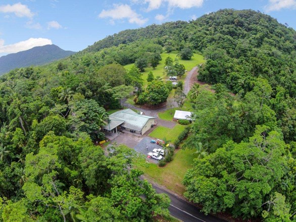 Picture of 1 Cape Trib Rd Diwan, Daintree