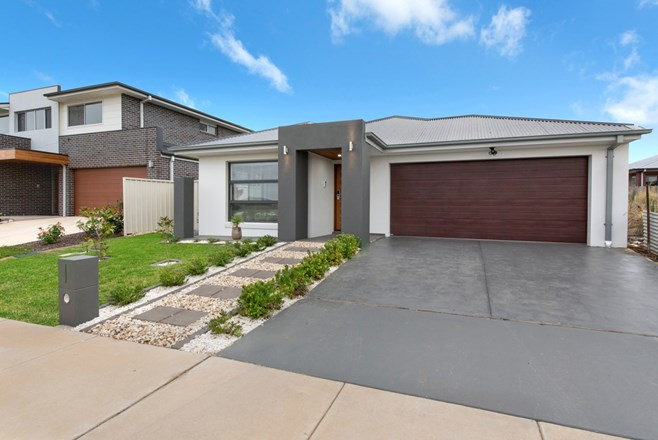 Picture of 23 David Fleay Street, Wright
