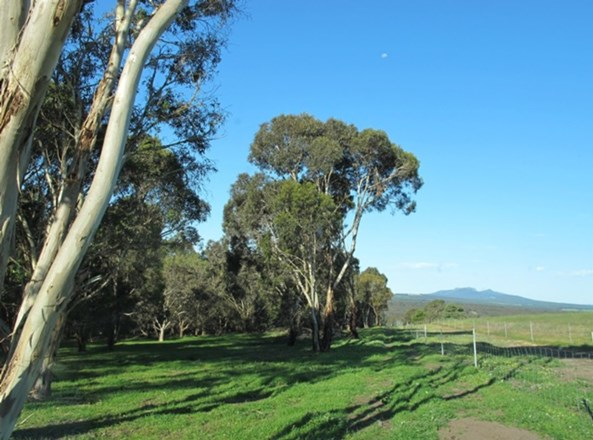 Picture of Braidwood Road, Mount Barker