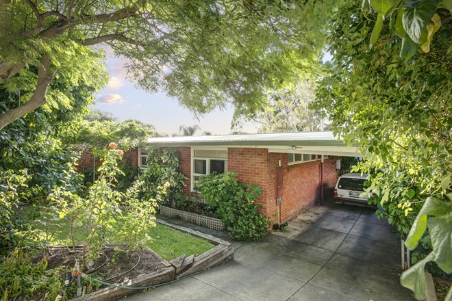 Picture of 1 Rokeby Road, Torrens Park