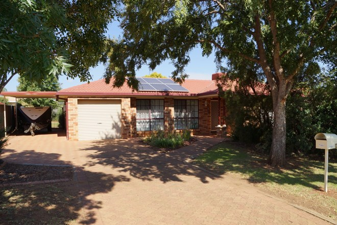 Picture of 12 Jacqueline Drive, Dubbo