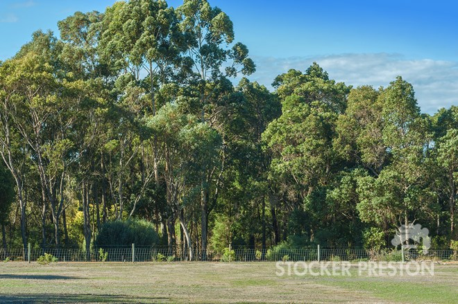 Picture of Lot 5 Serene Place, Quindalup
