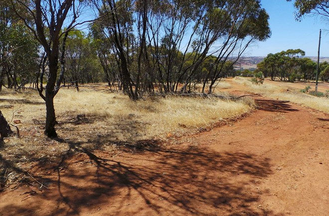 Picture of 164 Timbercreek Crescent, Toodyay
