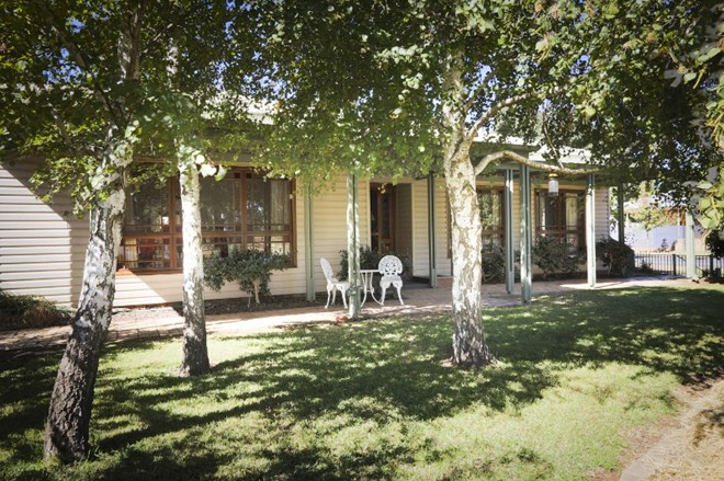 Picture of 41 Maiden Avenue, Leeton