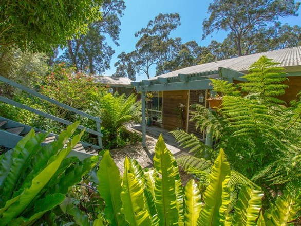 Picture of 14 Crest Cres, Moruya Heads