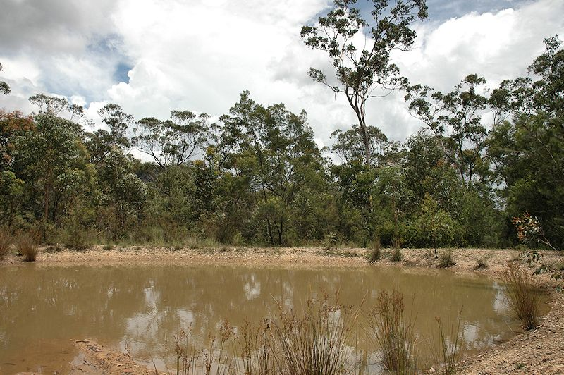 Lot 16 Rocky Creek Road, Wollombi NSW 2325, Image 10