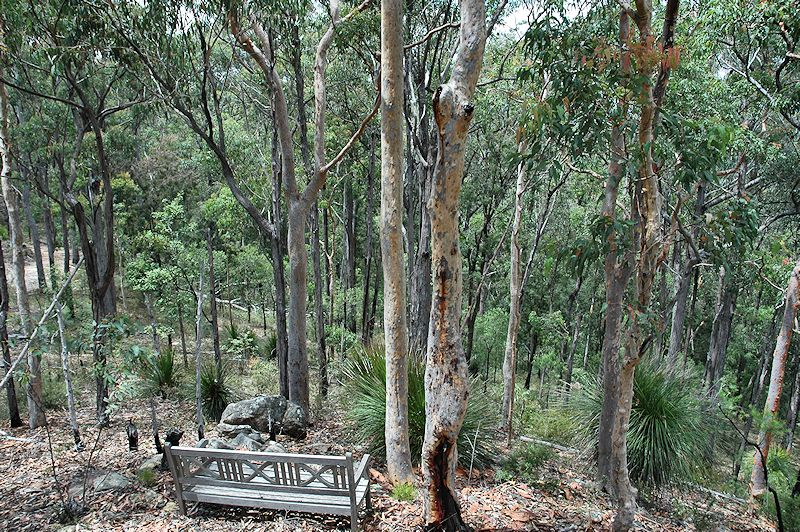 Lot 16 Rocky Creek Road, Wollombi NSW 2325, Image 2