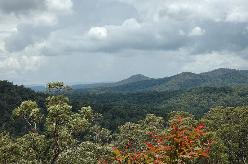 Lot 16 Rocky Creek Road, Wollombi NSW 2325, Image 3