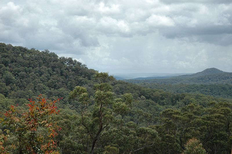 Lot 16 Rocky Creek Road, Wollombi NSW 2325, Image 7