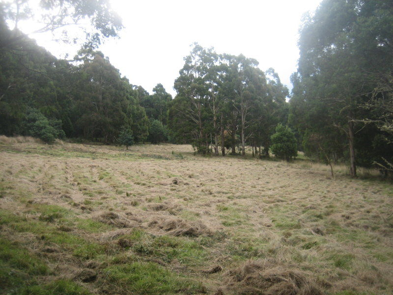 Lot B Wallhalla Road, Aberfeldy VIC 3825, Image 2