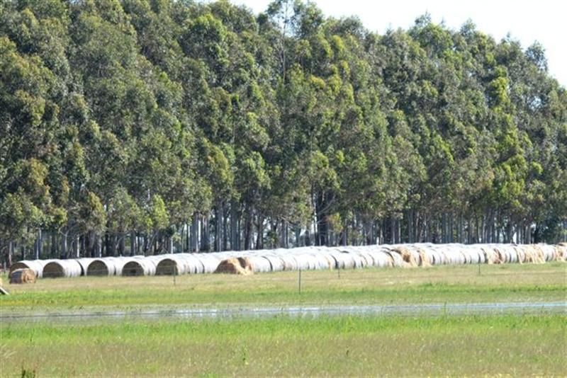 Rural Property For Sale Hopelands