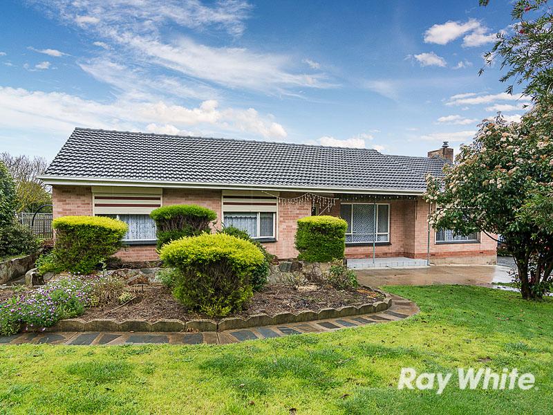 Ray White Mount Barker Real Estate Agency In Mount Barker Sa 5251