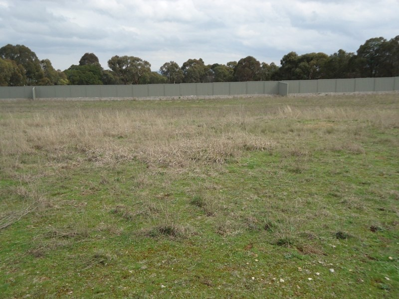 Lot 106 Manor Hills off Surry Street, Collector NSW 2581, Image 1