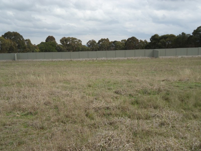 Lot 106 Manor Hills off Surry Street, Collector NSW 2581, Image 2