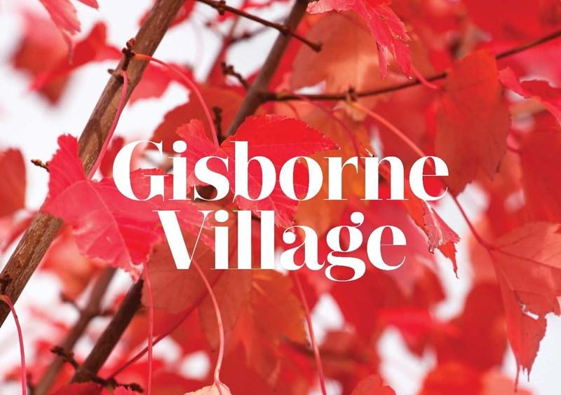 Picture of Gisborne