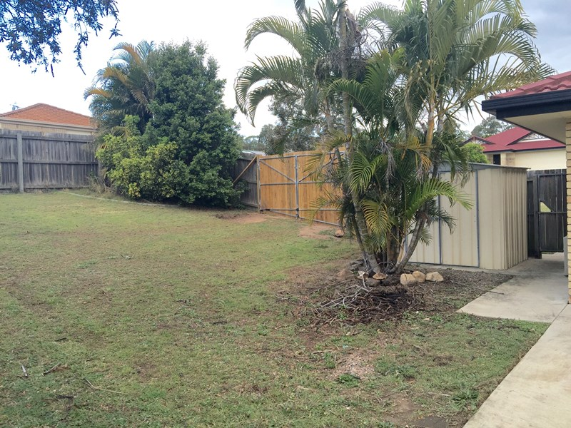 2 Buckland Crt, Collingwood Park QLD 4301, Image 1